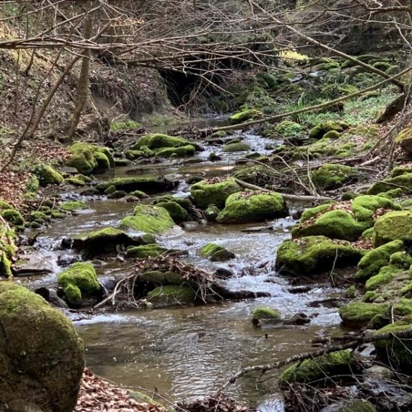 Mühletal